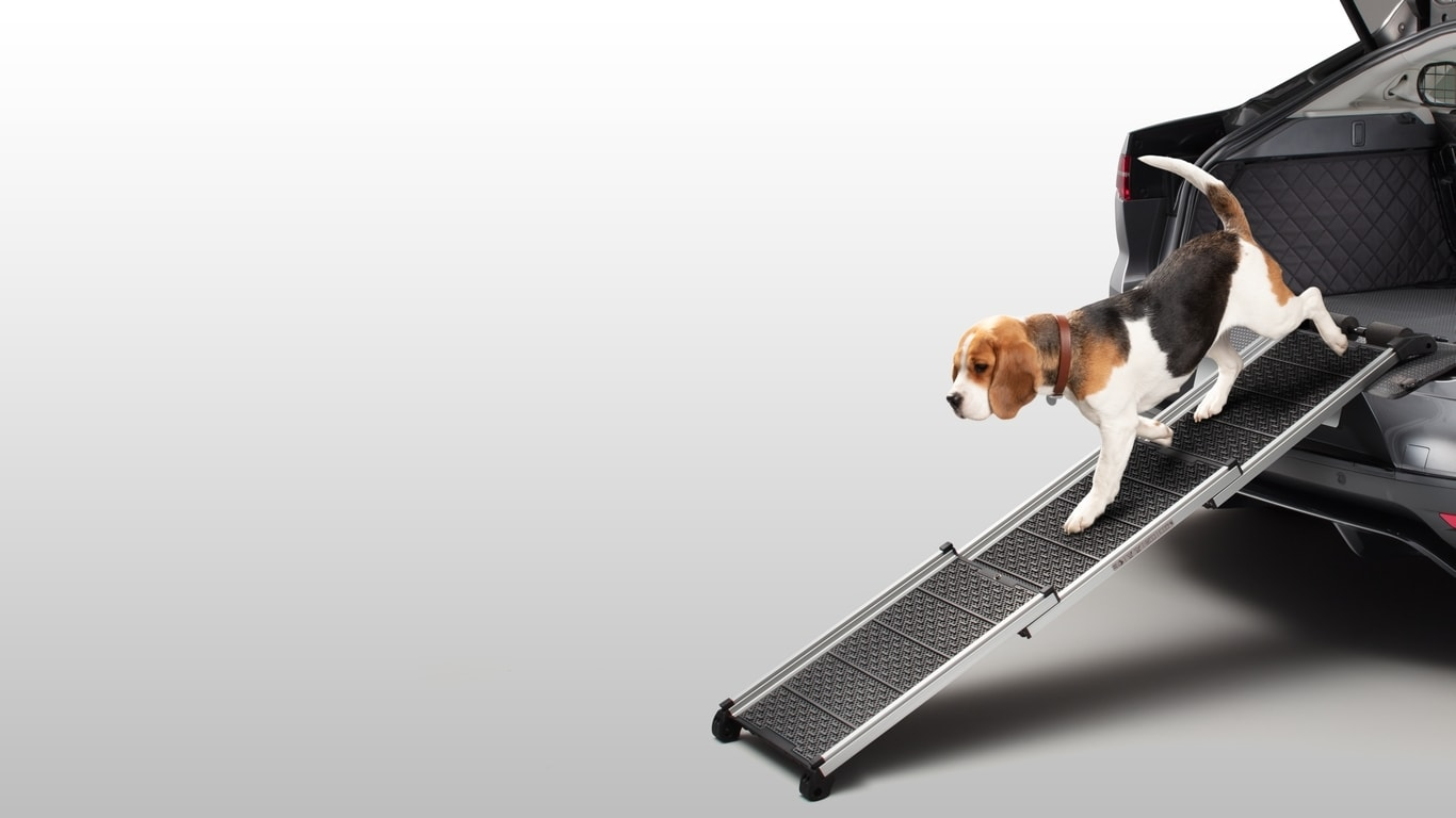 Pet Access Ramp