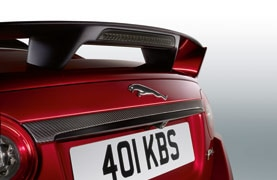 Rear Tailgate Trim - Carbon Fibre, with Reverse Park Camera
